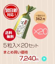 宇治抹茶生チョコレート 5粒入×20セット
